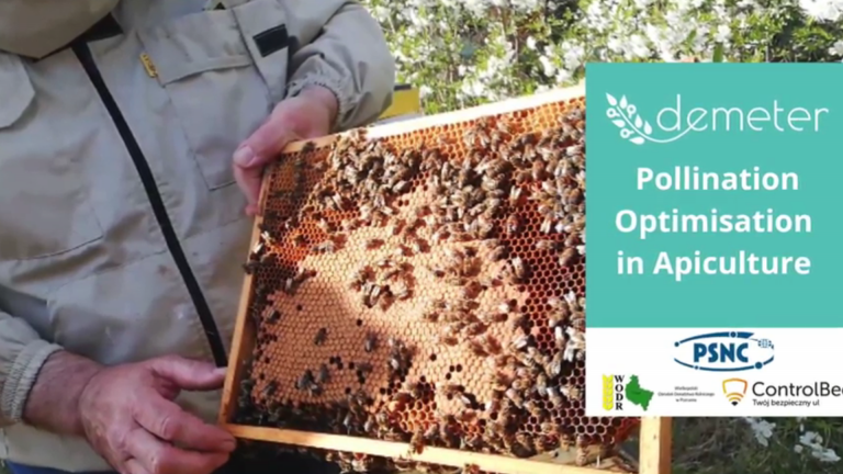 Pollination optimization service in the Demeter project